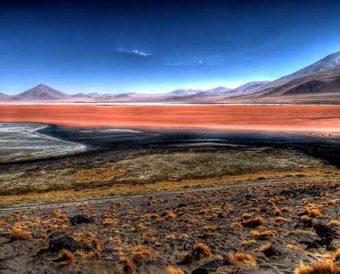 Colorada, la laguna de l'altiplano Bolivien