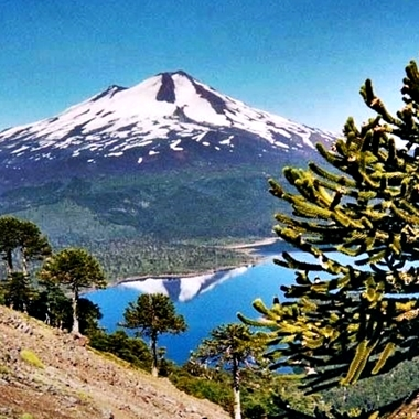 volcan LLaima, parc national Conguillío