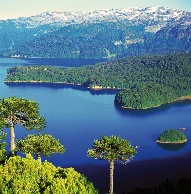 parc national Conguillio, Araucanie, Chili