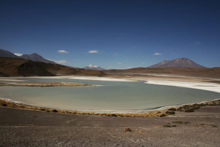 laguna blanca, Sud Lipez, Bolivie