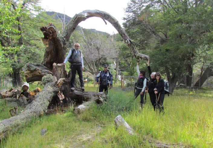 Trek en Patagonie argentine