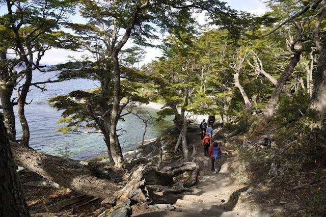 randonnée Parc National Terre de feu, Ushuaia
