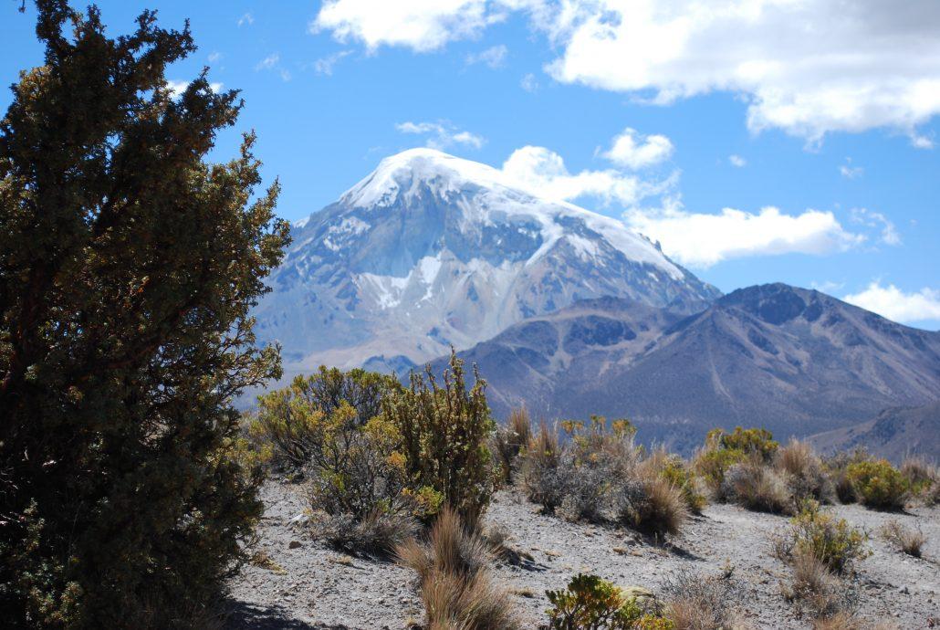 volcan Sajama, Bolivie